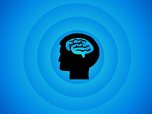 brain-494152_640