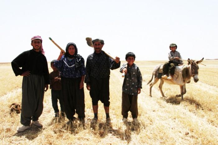 105サダムフセインの影響がなくなったキルクークに戻ってきたクルド人。 アラブ人の嫌がらせで畑に火を放たれた。