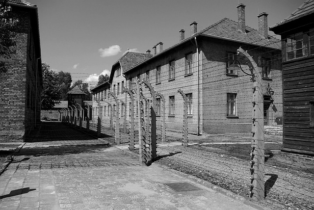 auschwitz-birkenau-1187913_640
