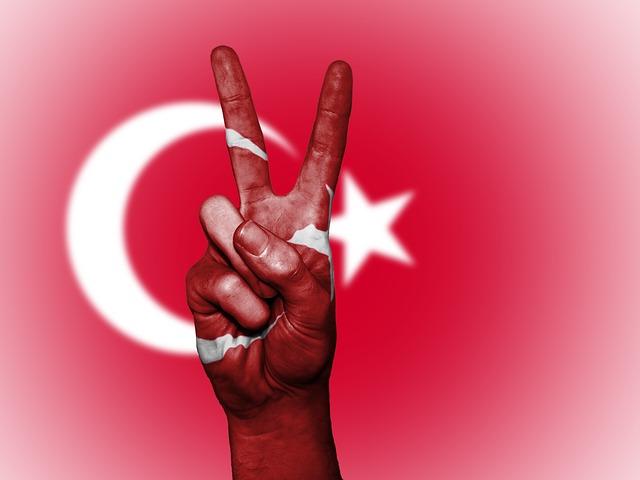 turk-2132659_640